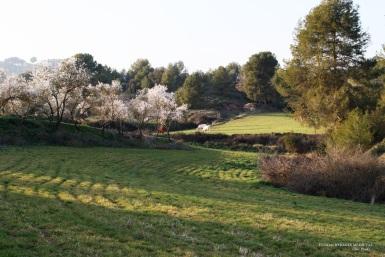 El Plaià a la primavera